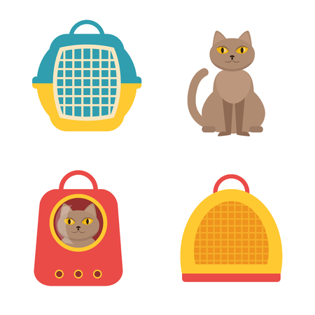 cat carrier: Cat carrier. Vector isolated illustration on a white background. Cartoon character. Drawing for vet clinics, pet shop.