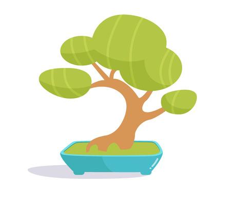 Bonsai tree. Illustration on white background. Isolated