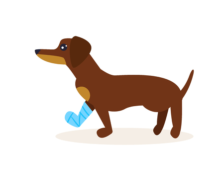 Dog with a broken leg. Vector.