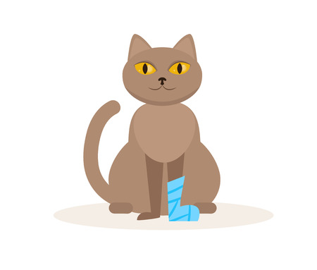 Cat with a broken leg Vector. Cartoon