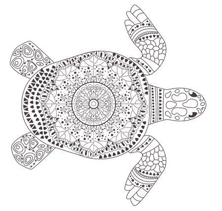 Turtle Coloring page Vector. Cartoon. Isolated art Vettoriali