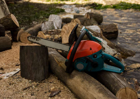 Lumberman using chainsaw sawing dry wood lying on ground.