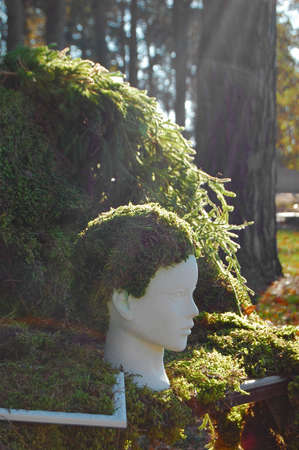 floristics: Floristics installation. Moss decoration. Head decorated by moss