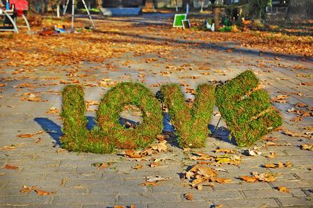 floristics: Words LOVE on autumn background. Floristics. Love expression installation.