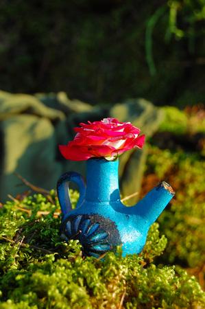 floristic: Garden with floristic decoration, floristics design