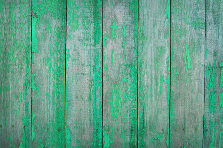 palisade: green wooden planks, palisade Stock Photo