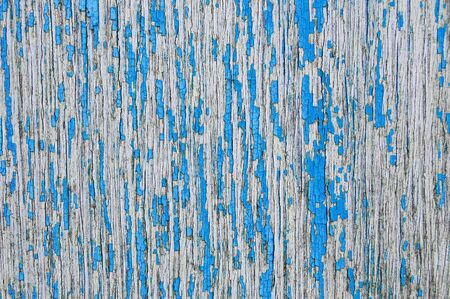 flaking: blue cracked paint on a wooden wall