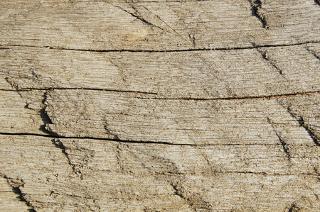 Wooden texture with cracks. vintage weathered wood background for design. cracked