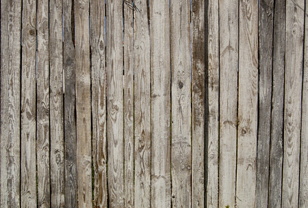 wood panel: old wooden fence. wood palisade background. planks texture Stock Photo
