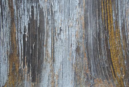 Altes gebrochenes Farbenmuster auf einem hölzernen Hintergrund. Abblätternde Farbe. Standard-Bild - 92055457