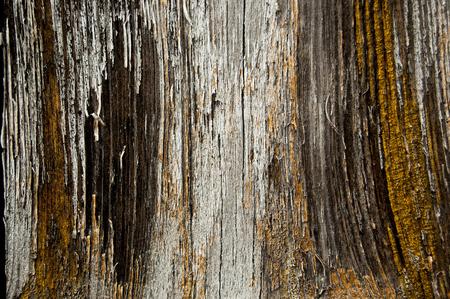 Old cracked paint pattern on a wooden background. Peeling paint. Standard-Bild