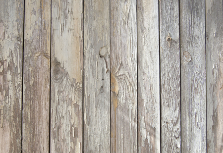 old wooden fence. wood palisade background. planks texture, weathered surface
