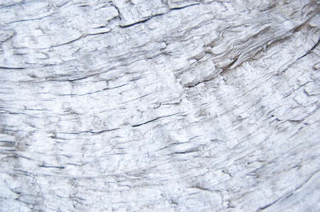 old wooden fence. wood background. planks texture, cracked paint