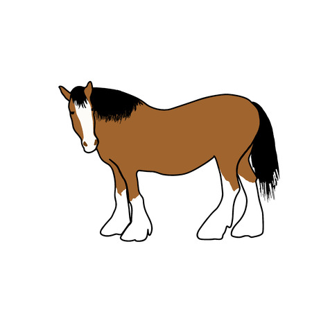 brown horse: beautiful animal,brown horse,a horse with a black mane,the horse is the animal,the animal for sport,running competition