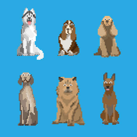 Pixelated dogs