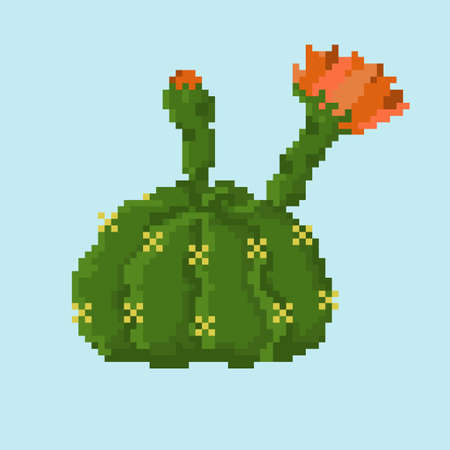 Blooming orange flowers pixel cactus isolated on a blue background.