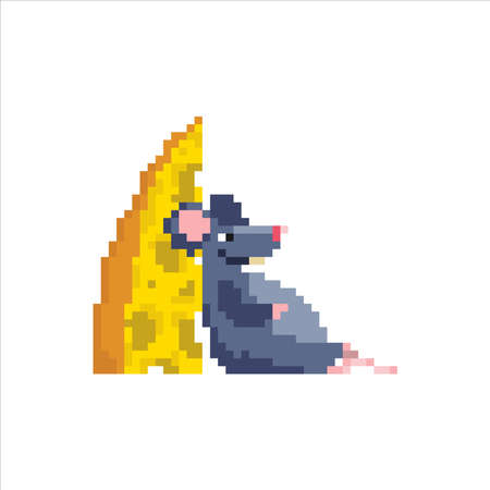 A full rat sits leaning on a piece of cheese.