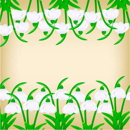illustration snowdrops on a beige background