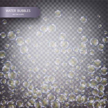 vesicles: Water bubbles isolated on a transparent checkered background. Underwater effervescent sparkling oxygen bubbles in water. Vector realistic effect template 10 eps.