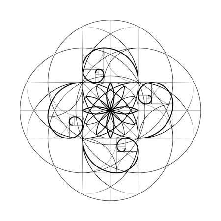 ゴールデン セクション。神聖な幾何学。ベクトル記号数フィボナッチ ラインの交差点。交差する線。交差する円。幾何学的なパターン。 ベクトル   イラスト・ベクター素材