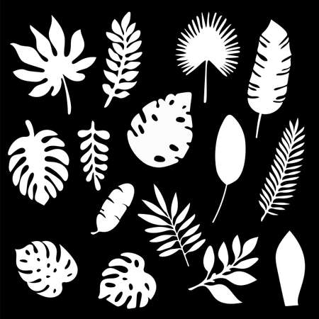 Palm leaves silhouettes set isolated on black background. Tropical leaf silhouette elements set isolated. Ilustração