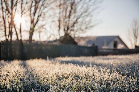 Ein Grundstück mit Rasen für den Bau eines neuen Hauses oder Territoriums zum Weiden von Nutztieren an einem frostigen sonnigen Morgen Standard-Bild
