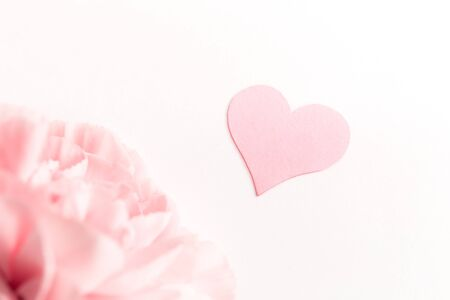 Three pink carnations isolated on white background with heart symbol of love, minimalism