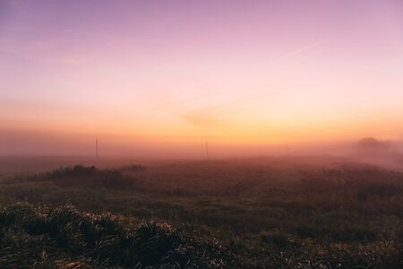 Early morning in a field with a pink dawn and shrouded haze of mist, a mesmerizing mysticism of nature, awakening and beginning