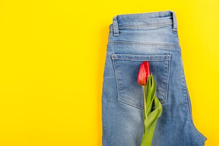 Red tulip peeks out of pants or shorts on a pink background. The concept of a healthy diet, a beautiful body, youth, weight loss or losing weight. Top view mockup.