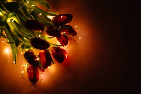 The flowers of red tulips lie in the dark with the garland turned on. Banner or wallpaper with free space for text. Romantic or sad atmosphere.