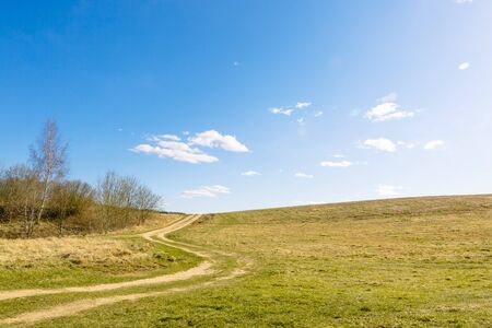 A rural dirt road stretches along bends along the edge of the forest along a field against a blue sky in fine sunny weather. Can be used as a picture for interior decoration. Untouched nature.