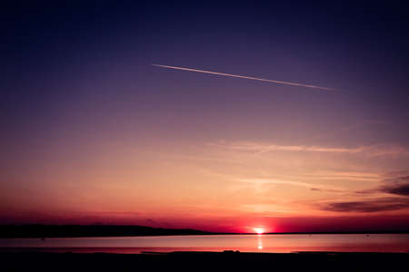 view of the sunset through the branches of the will on a bright sunset over the lake, blue and pink gradient sky Banque d'images