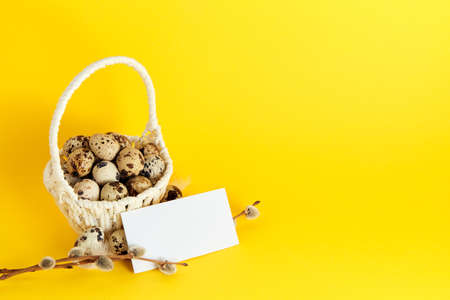 Visiting card, white straw basket full of quail eggs, pussy willow branch on yellow paper background with copy space. Empty text place. Mockup design of Easter holiday. Handmade decor. Healthy food. Stockfoto