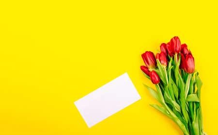 White gift certificate envelope or business card on yellow background with a bouquet of red tulips and copy space, text place. Holiday greeting card. Happy Valentine Day or Woman Day or Mother Day.