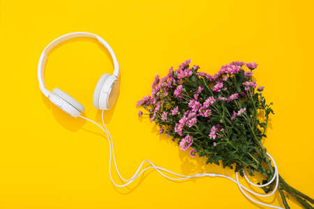 Large white headphones and lush chrysanthemum flower on yellow background with space for text. A gentle and romantic melody. Hello Spring. Flower shop. Musical accessories store. Summertime lifestyle. Stockfoto