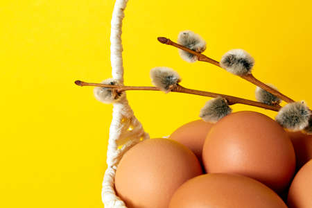 Yellow background with straw handmade basket full of eggs and pussy willow twig. Copy space. Empty text place. Easter greeting card. Springtime mockup design. Decoration. Healthy food product. Stockfoto