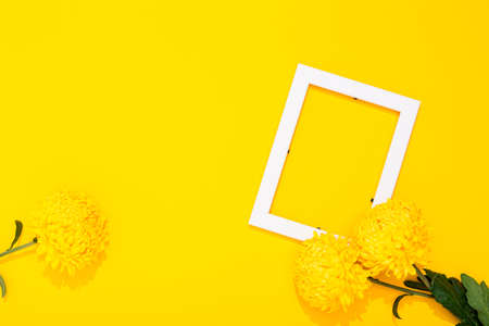 Banner with flower and blank white photo frame on yellow background with copy space, free text place. Framing workshop. Bright festive certificate. Border picture. Summer remembrance. Greeting card.