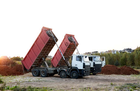 Two red dump trucks simultaneously lifted the bodies to unload the sand. Cargo transportation services. Large multi-ton truck. Unloading cargo. Construction site and machinery. Banner. Common view. Stockfoto