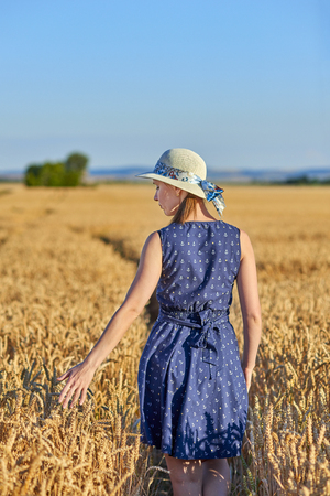 Young woman in blue dress with spikelets of wheat in wheat field - from the back