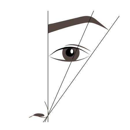 schemes: How to paint the eyebrows. Trendy makeup brows scheme. Female eyes and eyebrows vector elements.