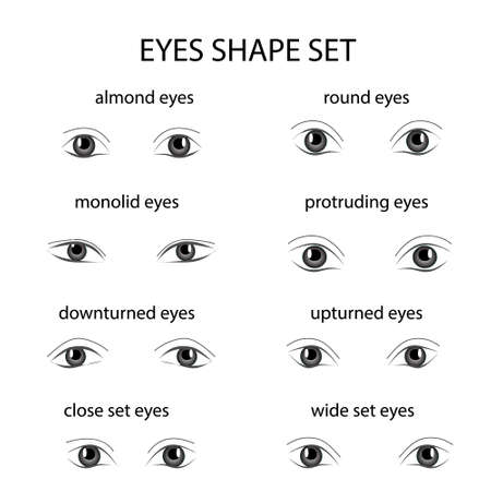 Various types of woman eyes on white background. Illustration