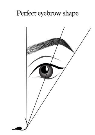 How to paint the eyebrows. Trendy makeup brows scheme. Female eyes and eyebrows vector elements.