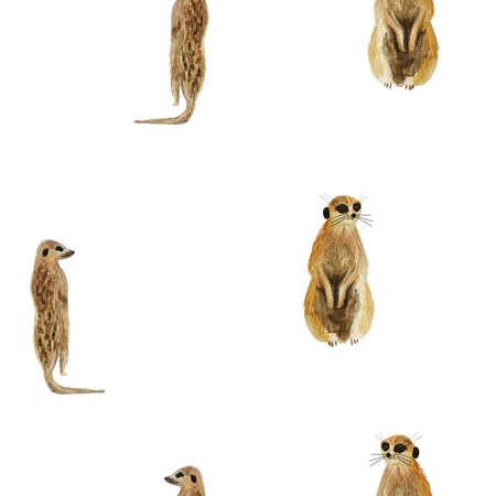 aquarel dierlijke mercats naadloze patroon op witte achtergrond. Eindeloze mode-illustratie voor stof of papier. Hand getrokken en geschilderde Afrikaanse surricats Stockfoto