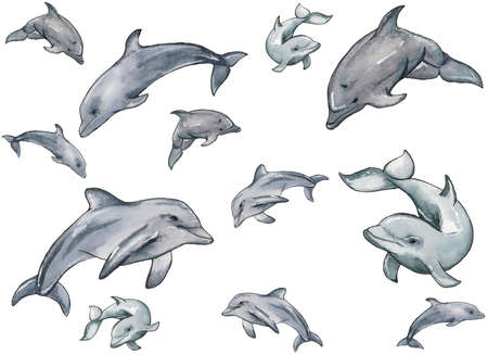 Hand drawn illustration pattern of watercolor swimming dophins isolated on white background