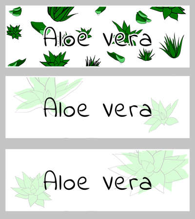 Horizontal banners, buisness card template with aloe vera plants. Isolated vector illustration with green stains on white background