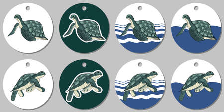 Round sticker template with sea turtle. Isolated vector illustration with white and turquoise stains on white background Illustration