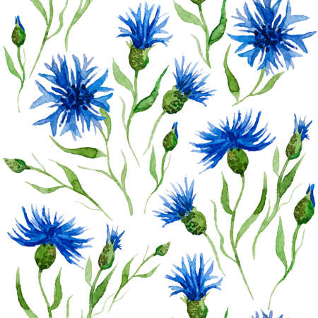 Seamless vector pattern with watercolor cornflowers. Hand drawn ornament with blue wildflower.  Perfect for greetings, invitations, manufacture wrapping paper, textile, web design. Vector