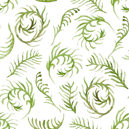 Seamless vector pattern with watercolor floral elements. Hand drawn ornament with green ferns.  Perfect for greetings, invitations, manufacture wrapping paper, textile, web design. Illustration