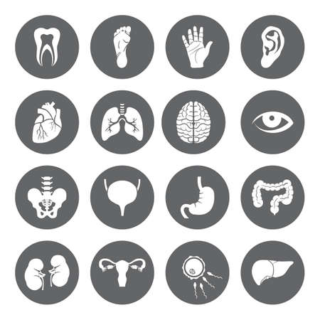 Set of vector Medical Icons with human organs in flat style. Medical white icons on black basis. Human anatomy flat icons for web and mobile applications. Vector