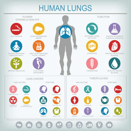 Medical infographics. Lungs function and health. Lung cancer and tuberculosis: risk factors and symptoms. Vector illustration. Ilustração